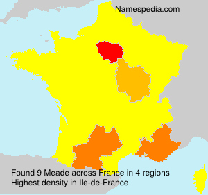 Surname Meade in France