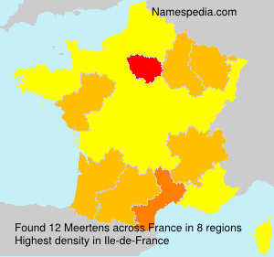 Surname Meertens in France