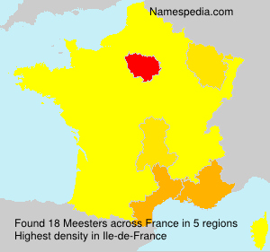 Surname Meesters in France