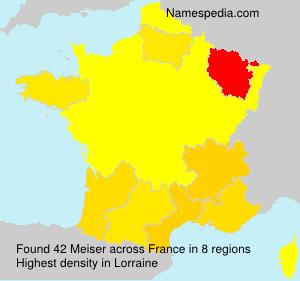 Surname Meiser in France