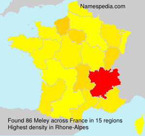 Surname Meley in France