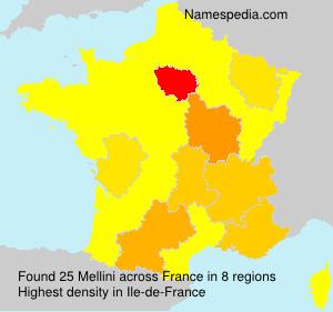 Familiennamen Mellini - France