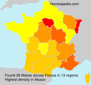 Surname Melzer in France