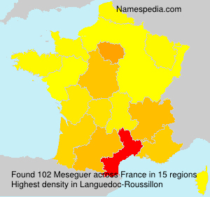Surname Meseguer in France