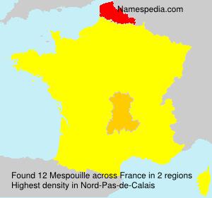Surname Mespouille in France