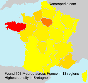 Surname Meurou in France