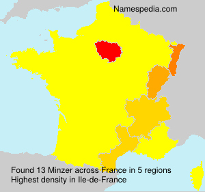 Surname Minzer in France