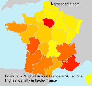Surname Mitchell in France