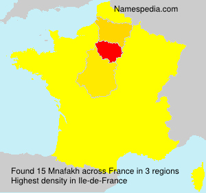 Surname Mnafakh in France