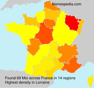 Surname Moi in France