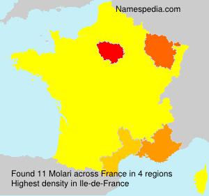 Familiennamen Molari - France
