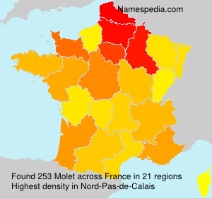 Surname Molet in France