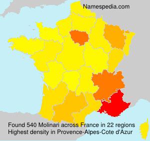 Surname Molinari in France