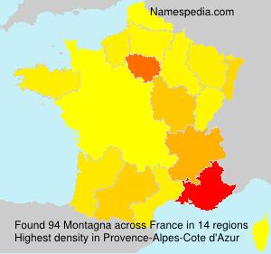 Familiennamen Montagna - France