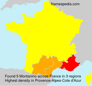 Surname Montanino in France