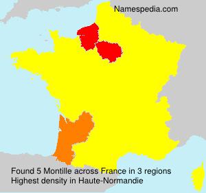 Familiennamen Montille - France