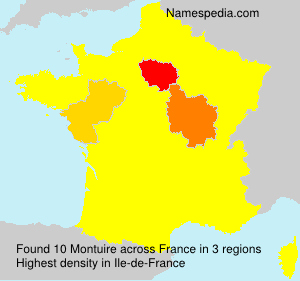 Surname Montuire in France