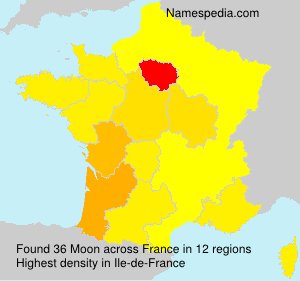 Surname Moon in France