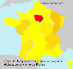 Surname Moquin in France