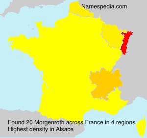 Surname Morgenroth in France