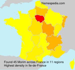 Surname Morim in France