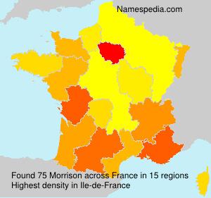 Surname Morrison in France