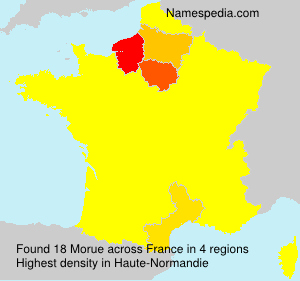 Surname Morue in France