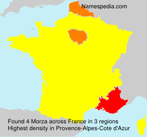 Surname Morza in France