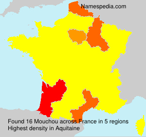Surname Mouchou in France