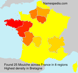 Surname Mouiche in France