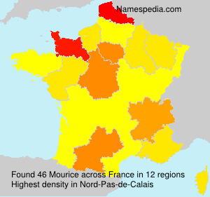 Surname Mourice in France