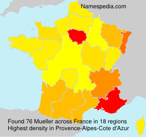 Surname Mueller in France