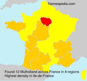 Surname Mulholland in France