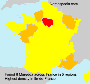 Surname Muredda in France