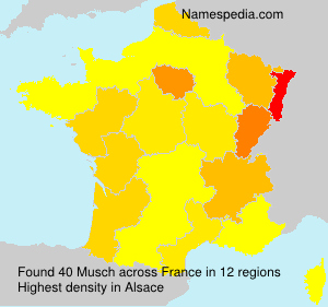 Surname Musch in France