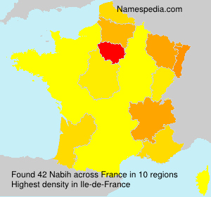 Surname Nabih in France