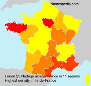 Familiennamen Nadege - France