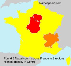Surname Nagalingum in France