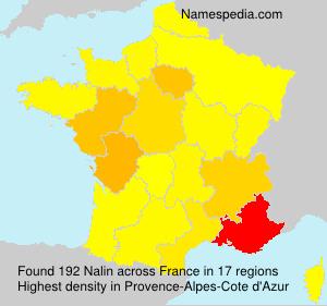 Surname Nalin in France