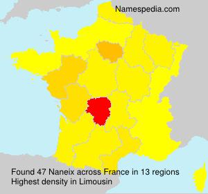 Familiennamen Naneix - France