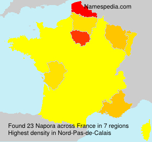 Surname Napora in France