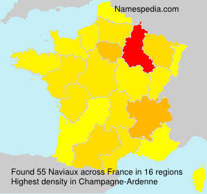 Surname Naviaux in France
