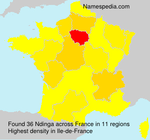 Surname Ndinga in France