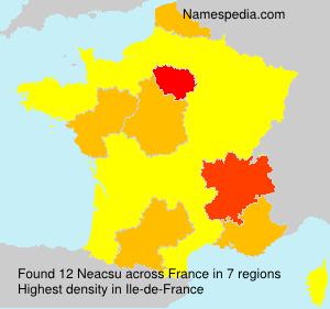 Neacsu - France