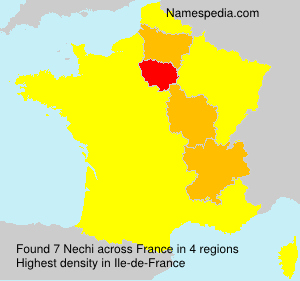 Surname Nechi in France