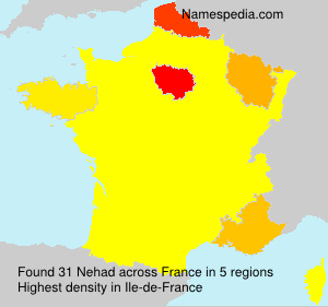 Surname Nehad in France