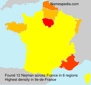 Surname Nejman in France