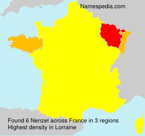 Surname Nenzel in France