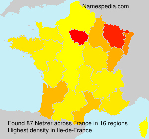Surname Netzer in France