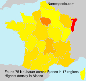 Surname Neubauer in France